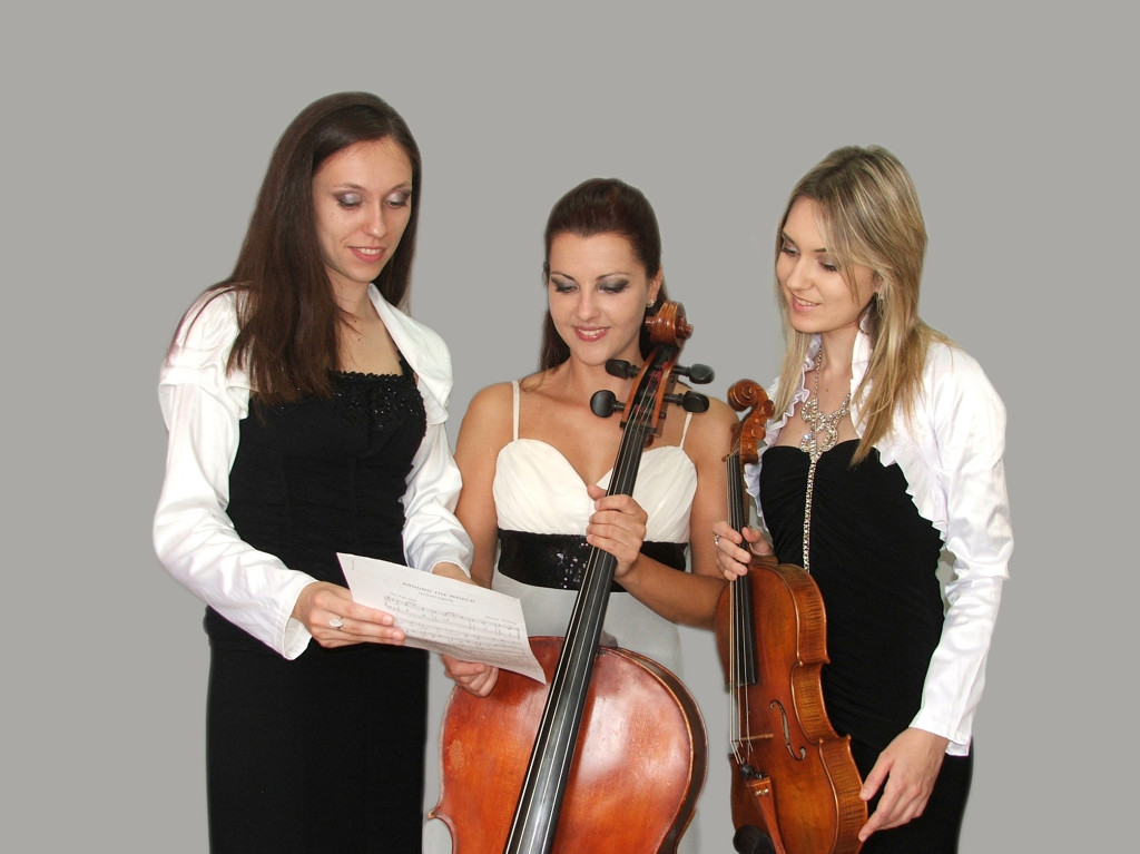 Trio Juve - viola, violoncello and piano